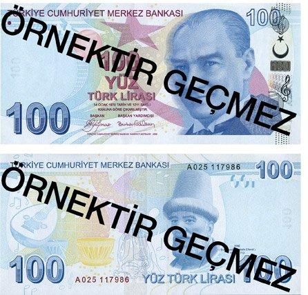 Billete de 100 liras turcas 2019 (100 TRY)