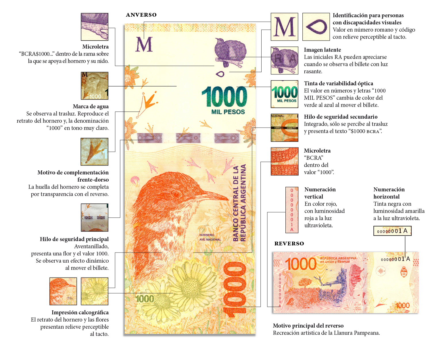 Billete de mil pesos argentinos $1000 Hornero