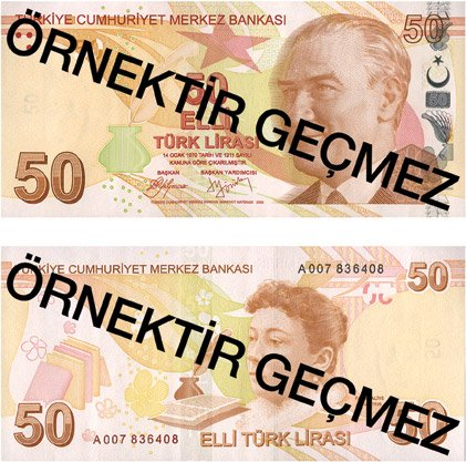 Billete de 50 liras turcas 2019 (50 TRY)