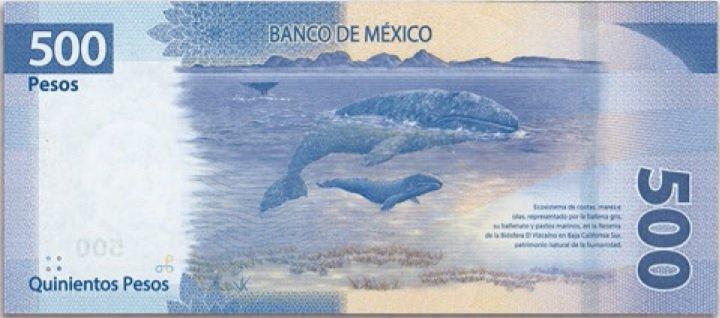 Billete de 500 pesos mexicanos 500 MXN reverso